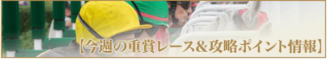 万馬券キングダム【重賞レース&攻略ポイント】