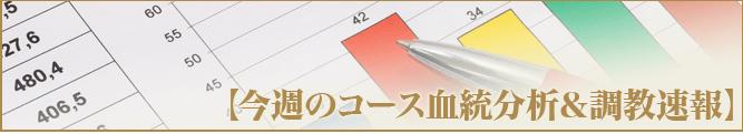 万馬券キングダム【コース血統分析&調教速報】