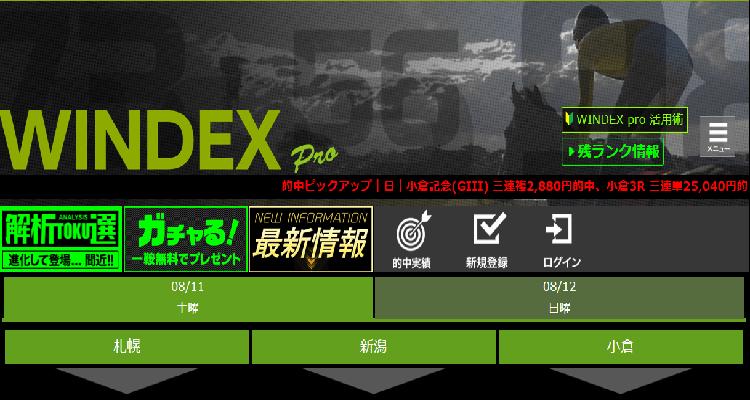 WINDEX pro